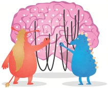 conexoes cerebrais